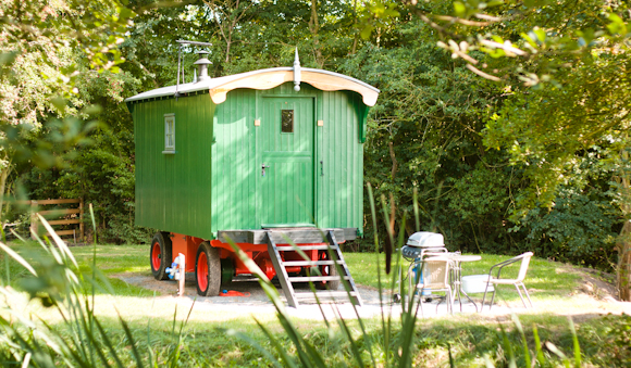Luxury Shepherd Hut - Glamping Holiday
